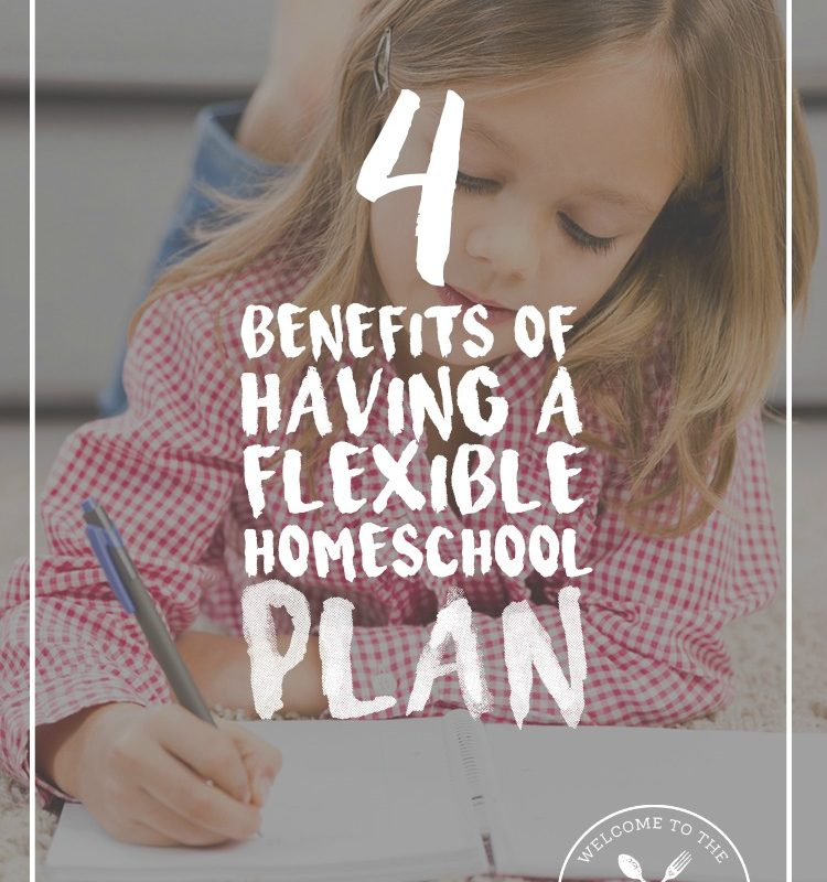 4 Benefits of Having a Flexible Homeschool Plan