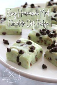 Easy Homemade Mint Chocolate Chip Fudge
