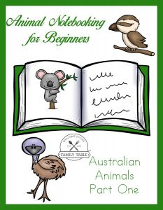 notebooking for beginners
