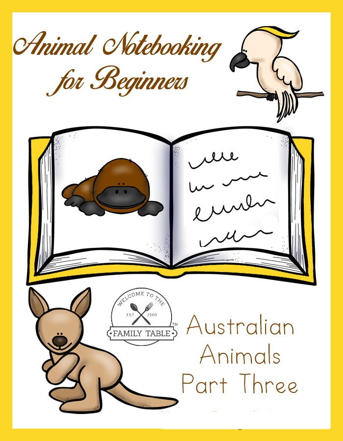 Come and learn more about Australian Animals with this Animal Notebooking for Beginners - Australia, Pt. 3