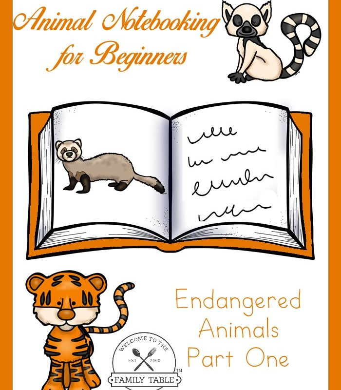 animal notebooking