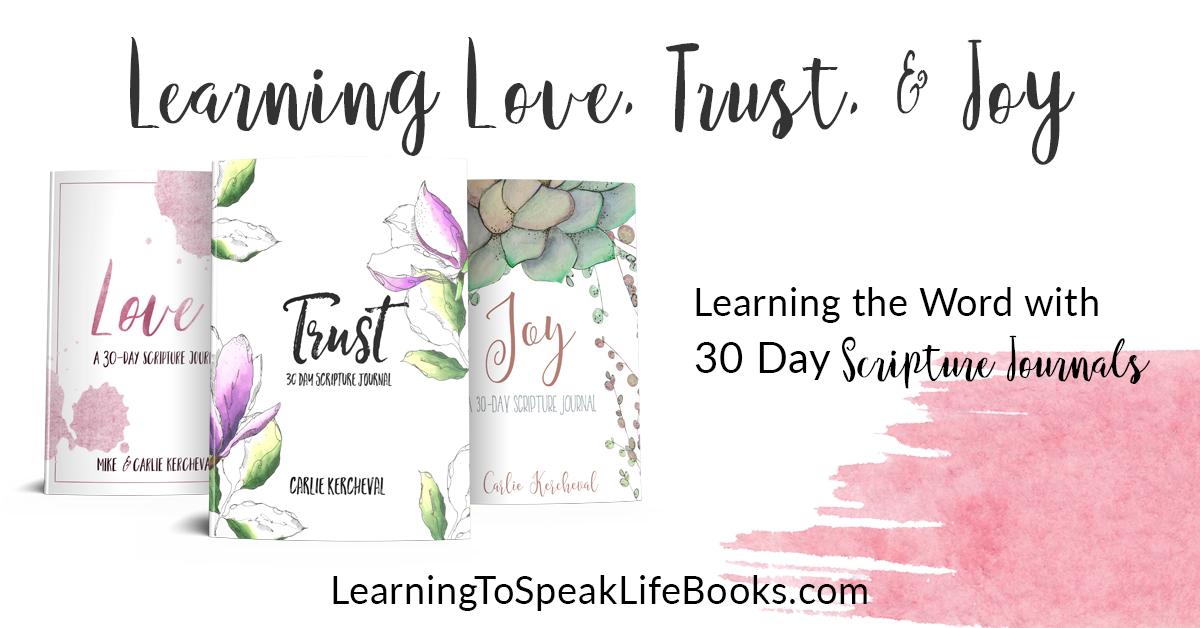 30-Day Scripture Journals