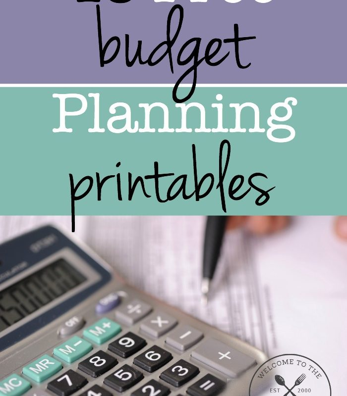 Looking for some free budget planning printables? Well you're in luck! We have 15 free budget planning printables just for you!