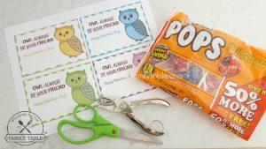 Owl Valentine Materials